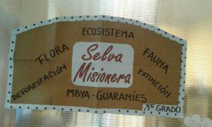 Tercer grado aprende a estudiar - Proyecto selva misionera - Colegio Jockey Club Córdoba - IMG-20160623-WA0000