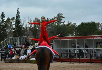 Colegio Jockey Club Córdoba - Volteo deporte que combina Gimnasia Artística y Equitación - IMG-20160718-WA0006