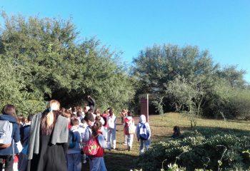 Jardin Botanico (18)